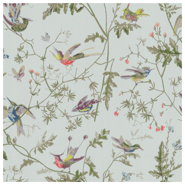 Papier Peint Oiseaux Vert Hummingbirds Cole And Son Au