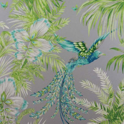 Papier peint - Matthew Williamson - Bird of Paradise - Mint