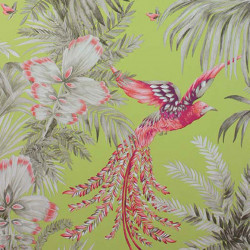 Papier peint - Matthew Williamson - Bird of Paradise - Lime
