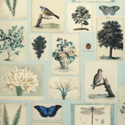 Papier peint - Designer's Guild - Flora and Fona - Cloude blue