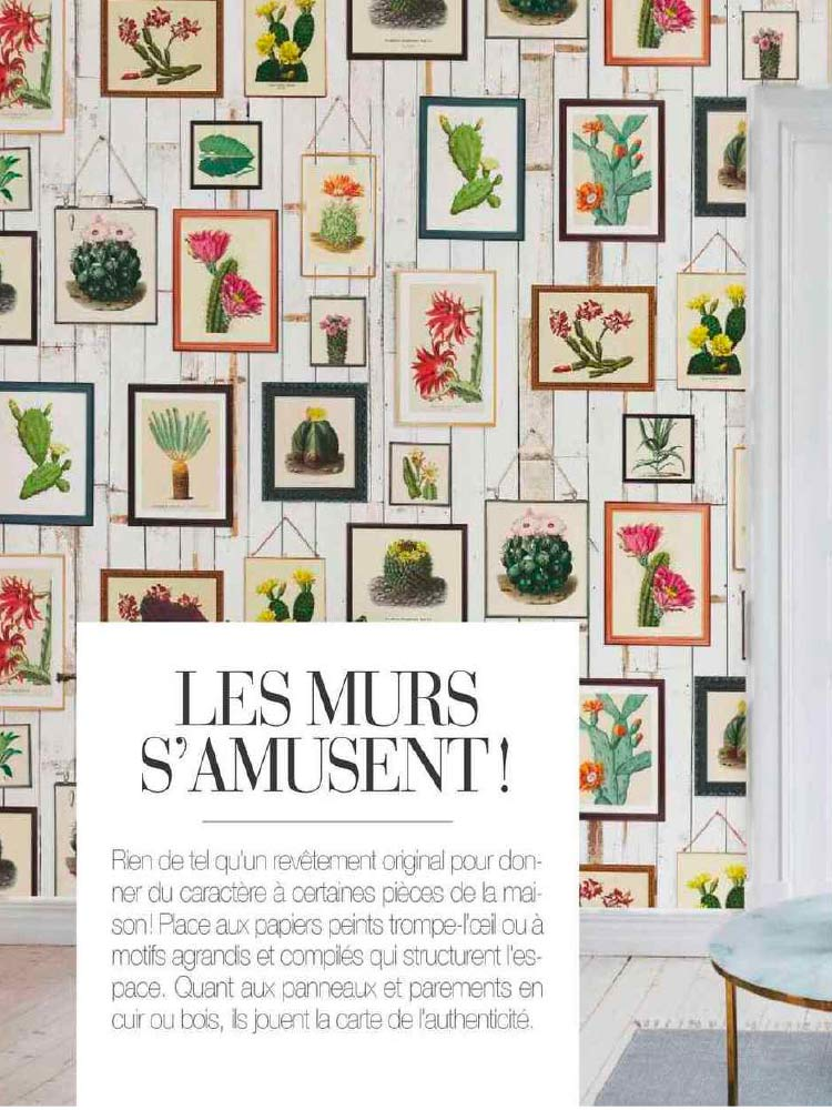 art-et-decoration-mai-juin-2019-cactus-wall-art-faded-rebel-walls