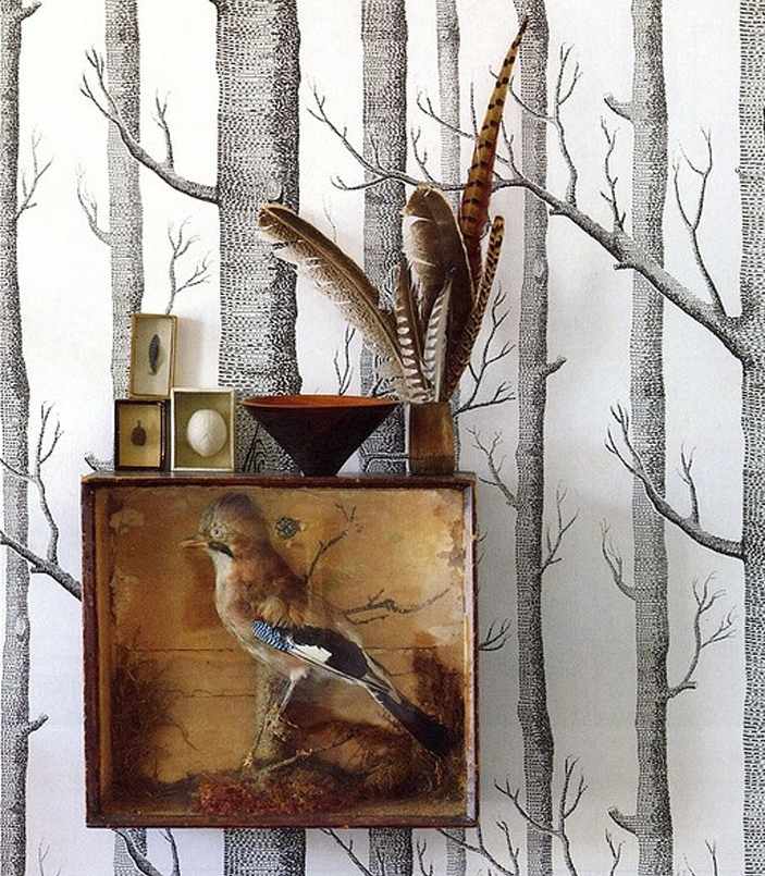 papier peint Woods cole and son troncs de d'arbres